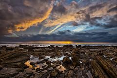 January Sunset (murraycdm) Tags: crystalcove crystalcovestatepark newportbeach california orangecounty murraycdm ronanmurray nikon d800e 1635mm lowtide clouds blue reflections seascape