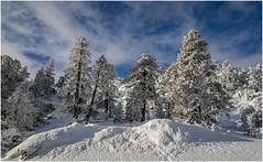 Larra-Belagua006 (Fermin Ezcurdia) Tags: larra belagua navarra pirineo nieve pyrenees esquinordico arlasarette anie