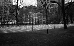 Madison Square Park (triebensee) Tags: koaktrix400 kodakhc110 dilutionh 163 epsonv700 selfdeveloped film nikon f2 nikkor 28mm f28 ais