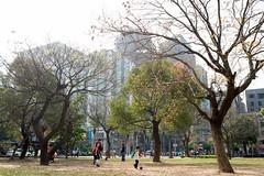 新莊路 (moseskim27) Tags: nikkor nikonaf35mmf2d hsinchu child park