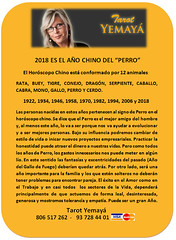 2018 AÑO DEL PERRO (tarotyemaya) Tags: 806517374videnciarosayemayá amor destino futuro sinpreguntas
