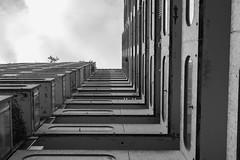 perspective urbaine (Rudy Pilarski) Tags: nikon tamron d7100 2470 urbain urban urbano urbanisme paris paysage france ladéfense city ciudad ville bâtiment building bw nb monochrome moderne modern lookup structure sky cloud nuage geometry geometrie geometria minimal minimalisme architectura