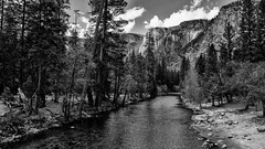 Yosemite 2018 (hermitsmoores) Tags: fx hiking fullframe halfdome leaves mountains nature nikon nikond800 rivers skies streams trees water waterfall yosemite yosemite2018 yosemitefalls zen bw blackwhite