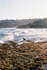 (Filip.G) Tags: nikonfa nikkor50mmf12 hillvalesunny16400 film 35mm sydney beach