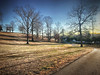 Long Shadows, 2017.01.02 (Aaron Glenn Campbell) Tags: knoxville knoxcounty lakeshorepark sunlight shadows trees park openspace walking path hdr vividhdr snapseed madewithfaded apple iphone7plus exercise winter vacation visit nonprofit trail perimeter