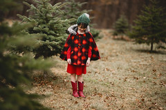 Festive (Elizabeth Sallee Bauer) Tags: christmas nature child childhood decorating decoration evergreen festive girl holiday kid outdoors outside pine plaid playing portrait red reindeer seasonal tradition youth
