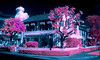aerochrome cottage (fe2cruz) Tags: ir panasonic dmcfh20 lumix dc vario 14mp infraredconversion 650nm kolarivision trees grass house eir aerochrome infrared cyan pink flora sundaylights color