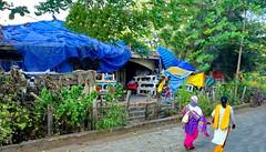 Happy Fence Friday! Goa, India (peggyhr) Tags: peggyhr fence women saris colourful hff trees dsc02515a goa india green blue yellow pink candid