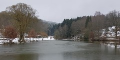 Cold and boring! (:Linda:) Tags: germany thuringia village bürden pond snow reflection conifer willowtree ice