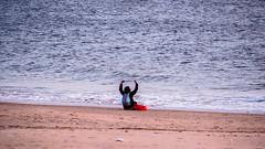 Beach Worship (deepaqua) Tags: brooklyn beach offseason winter coneyisland bird atlanticocean surf sand seagull ocean gull