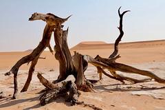 Dead Vlei (near Sossusvlei), Namib-Naukluft National Park, Namibia, 26 Jun 2017 (ctmlondon) Tags: africa namibia scenery canon canon80d namibiadesert namibianaukluftnationalpark desert dunes sand sossusvlei deadvlei
