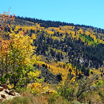 First Signs of Autumn in Rock Creek Canyon, CA 2016 thumbnail