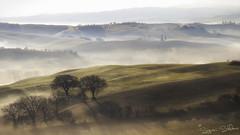 Magia della nebbia in val d'Orcia (signori.stefano) Tags: valdorcia nebbie paesaggio landscape toscana tree sunrise alba