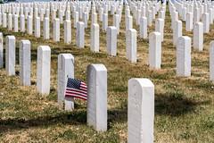 The Ultimate Sacrifice (grimeshome) Tags: littlebighorn cemetary amercian americanflag flag unitedstatesofamerica headstone tombstone grave military theultimatesacrifice montana