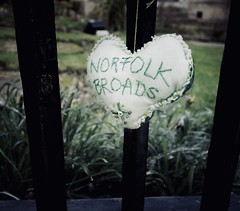 45/365 WI Hearts (denise.ferley) Tags: norfolkbroads streetphotography oneaday fun uk thisisnorwich thisisengland norwich wigreenhearts greenhearts hearts wi citylife flickrfriday myheartwillgoon