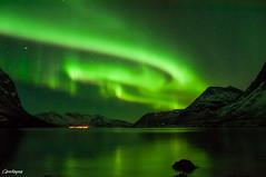Carollayna-2814 (Carollayna) Tags: aurora northernlights norway tromso nikond90 arcticcircle arctic nightphotography auroraborealis