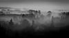 Foggy winter (Fab. A) Tags: monochrome blackandwhite noiretblanc paysage panorama landscape fog brume brouillard trees canonm