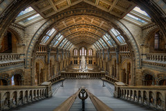 London Natural History Museum 1 (Jacob Surland) Tags: animals architecture art bluewhale building caughtinpixels ceiling city country england fineart fineartphotography geometry greatbrittain highdynamicrange jacobsurland light lines london naturalhistorymuseumlondon skeleton stairs uk unitedkingdom warmlight whale