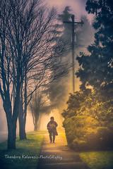 Πες μου ένα χρώμα να σε θυμάμαι. (Theodora Kalavesis) Tags: landscape canada vancouver vancity vancouvercity bc britishcolumbia trees streetphotography streetphotogpaphy people mist fog foggy atmosphere foggyatmosphere colors walking theodorakalavesis theodorakalavesisphotography theodora