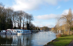 Happiness is... (karenblakeman) Tags: caversham uk thames river boats trees january 2018 2018pad birds seagulls sky clouds reading berkshire smileonsaturday happinessis