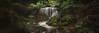 Weeping Rock Leura (Ray Jennings AU) Tags: weepingrockwaterfallleura waterfall leura bluemountains panorama rayjennings nikond810 sigma35mm14