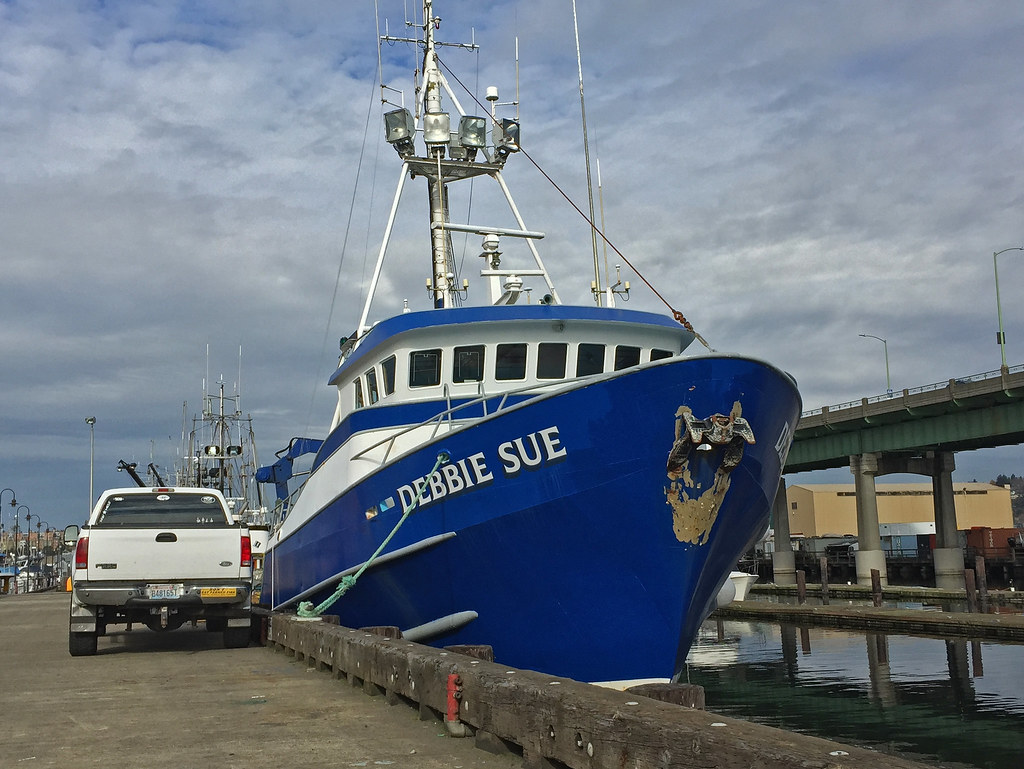 The World's Best Photos of halibut and portofseattle