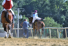 "2017-06-30 (52) r9 Victor Carrasco mounts #6 Mar Vista Miguel (JLeeFleenor) Tags: photos photography md maryland marylandhorseracing marylandracing jockey جُوكِي jinete dżokej jocheu คนขี่ม้าแข่ง jóquei žokej kilparatsastaja rennreiter fantino ""경마 기수"" жокей jokey người horses thoroughbreds equine equestrian cheval cavalo cavallo cavall caballo pferd paard perd hevonen hest hestur cal kon konj beygir capall ceffyl cuddy yarraman faras alogo soos kuda uma pfeerd koin حصان кон 马 häst άλογο סוס घोड़ा 馬 koń лошадь outside outdoors"