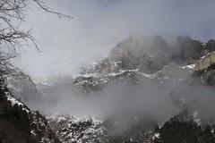 brume sur la montagne (bulbocode909) Tags: valais suisse montagnes nature hiver brume arbres branches neige