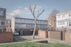 Thamesmead 3 (Andy Feltham...) Tags: pentax k1 smcpentaxfa31mmf18limited newtopographics banality mundane estate brutalist london