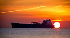 CSL Frontier (Paul Rioux) Tags: cslfrontier ship commercial transportation freighter bulkcarrier vessel marine morning sunrise dawn daybreak ocean sea port mooring moored moorage sun prioux