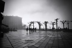 piazza Motta... (jackie bernelas) Tags: piazzamotta italie italia noiretblanc brouillard mist lumière hiver