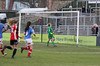 Lewes FC Women 5 Portsmouth Ladies 1 FAWPL Cup 14 01 2017-513.jpg (jamesboyes) Tags: lewes portsmouth football soccer women ladies fa fawpl womenspremierleague amateur sport womeninsport equality equalityfc sportsphotography game kick tackle score celebrate win victory canon dslr 70d 70200mmf28