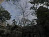 P1240445-2.jpg (vickydoc) Tags: cambodge taprohm cambodia angkor fromagers siemreap banteaysrei siemreapprovince kh