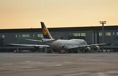 LH B748 GRU (Luis Fernando Linares) Tags: aviation avgeek airlines airplane airport aircraft apron ramp gate boeing widebody sbgr guarulhos gru dlh lh lufthansa deutsche jet quadjet genx