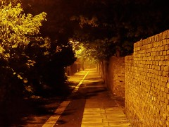 At the End of the Path (Mars Mann) Tags: nightphotography nocturnal bushes wall path vanishingpoint yellow lightshadow lowlight shadows haunting scary urbanstreets urbannight passage flickrmarsmann olympuscamera trees streetlights distantview streetphotography longdistance longwalk marsmannphotography nature urbannature alley road walkway marsmannonflickr