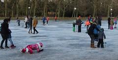 Adults and their children playing on the ice (Elisa1880) Tags: ijs ice children kinderen spelen playing winter cold koud ockenburgh koewijde schaatsen skating