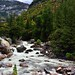 The Merced River Flowing Through a Mountain Valley (Yosemite National Park)