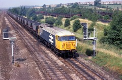 56121 is seen at Tupton working a mgr train in Aug 1983. I Cuthbertson collection (I C railway photo's) Tags: class56 56121 tapton mgr largelogoblue grid