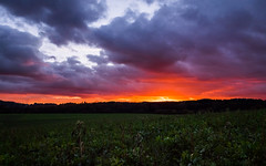 Fire over the Horizon (Herr Nergal) Tags: fz1000 lumix panasonic landscape landschaft nunkirchen saarland sunset clouds sky sonne sonnenuntergang evening abend abendrot sun wolken atmosphäre atmosphere colorful farbenfroh 7dwf