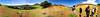 06-12-2017 05.45.23 (taver) Tags: chile rapanui easterisland isladepasqua summer samsunggalaxys6 dec2017 06122017 ranoraraku quary