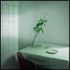 Lilien (Konrad Winkler) Tags: küche stillleben lilien stuhl tisch fliesen teller minimalismus hasselblad503cx epsonv800 kodakektar100 mittelformat 6x6