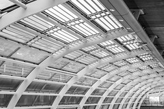 HKG (deborahb0cch1) Tags: architecture ceiling window windowceiling skylight lines line atrium geometric airport monochrome blackandwhite noiretblanc