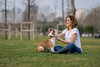 dog and owner having fun together (Mutlu Project) Tags: dog having fun with her owner grass together love share pet bulldog