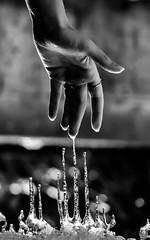Element. (AloysiaVanTodd) Tags: blackandwhite bnw natural nature winter ice water hand element art expressive artist artistic light snow body sensitivity poetry bokeh