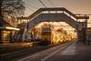 Dubbele DDAR arriveert in Putten (DAPPA01) Tags: veluwelijn trein spoor putten pt rails bovenleiding zijspoor station prorail ns stationsstraat overweg perron reizigers goederentrein cargo passarelle ddar winterzon ondergaande zon tegenlicht sfeer