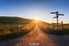 Camino hacia el Sol (Mimadeo) Tags: path sign hiking signpost nature direction way post trail outdoor landscape hike wooden footpath route road walk pathway countryside sun sunrays sunbeams gorliz plentzia plencia
