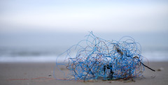 Untitled (Wouter de Bruijn) Tags: fujifilm xt1 fujinonxf35mmf14r beach sea sand water bokeh depthoffield plastic trash fishing line fishingline blue sculpture seaweed outdoor vlissingen walcheren zeeland nederland netherlands holland dutch