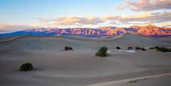 My first look at Mesquite Dunes in Death Valley...2015 (Wayne~Chadwick) Tags: