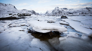 Iced in the Lofoten Isands, Norway