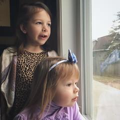Mornings With The Munchkins (matthewkaz) Tags: madeleine norah daughter daughters child children toddler window home house burcham eastlansing michigan 2018